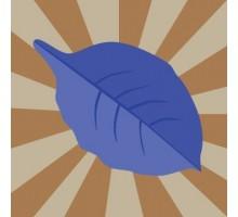 Eliquide Saveur Blue Leaf, Vapor Craze
