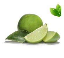 Eliquide Goût Citron vert, Alfaliquid