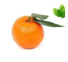 Eliquide Goût Clementine, Alfaliquid